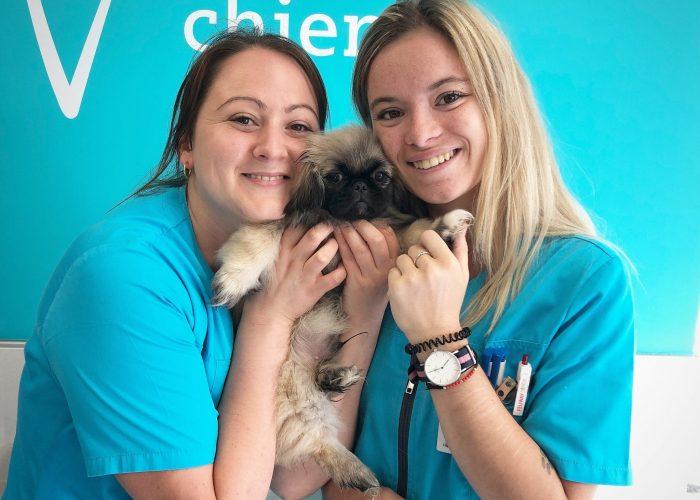 Photo clinique vétérinaire des Clomiers